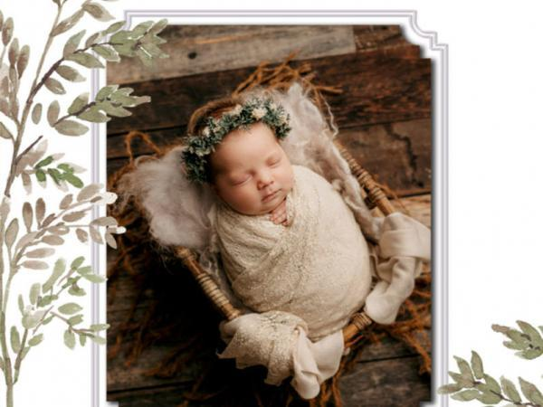 newborn-baby-family-head-shot-babies-photos-pricing-review-photographer-photography