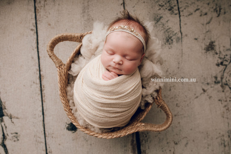 newborn baby family photographer photography photograph photos photo babies gold coast brisbane the best family picture pictures tanha basile winni mini