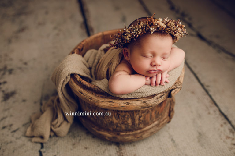 babies newborn baby family photographer photography photograph photos photo babies gold coast brisbane the best family picture pictures tanha basile winni mini