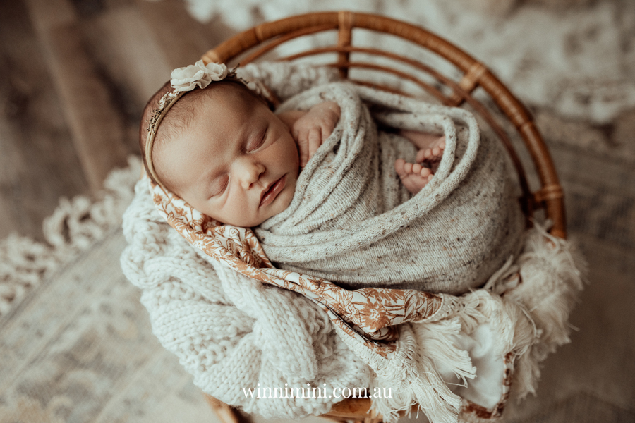 newborn family baby family photos photography pindara bunting obstetrician mater mothers