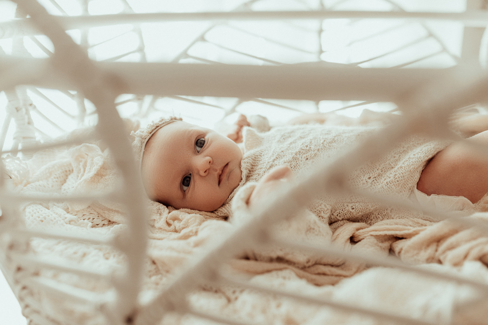 Winni Mini Photography newborn baby family maternity ward photographer gold coast brisbane pregnancy pindara upper coomera-1